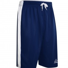 Larry Reversible Basketball Shorts | Inspired Sports Solutions Ltd